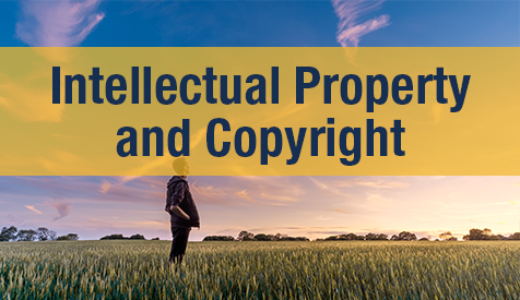 Intellectual Property and Copyright